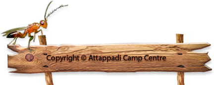 Copyright © Attappady Camp Centre